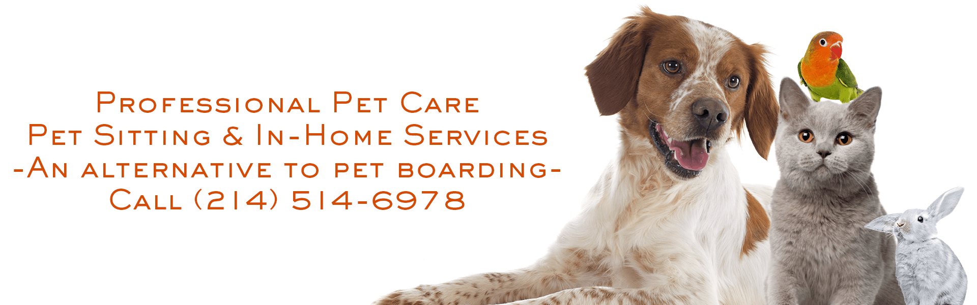 Coppell Pet Sitting, An Alternative to Pet Boarding, https://annies-pet-sitting.com